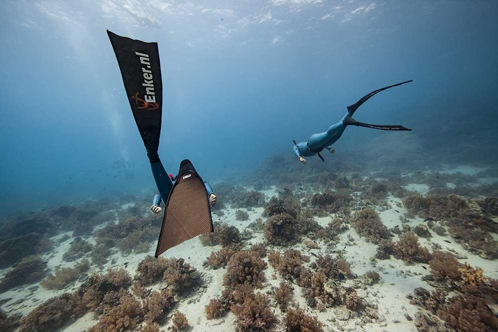 Enker Freedive opleiding