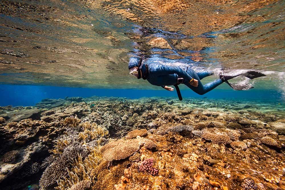 nanja freedive koraal
