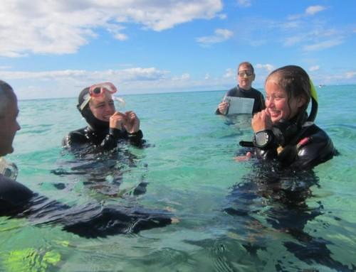 Foto freediving 17