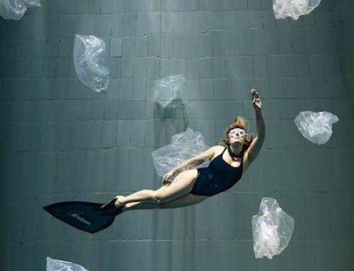 #stopmetplastic :8 ideeën om een nog eco-vriendelijkere freediver te worden